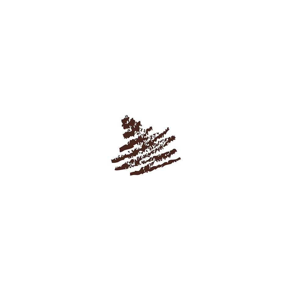 PL-307 Chocolate - Lip Liner Pencil - Tem Image Professional